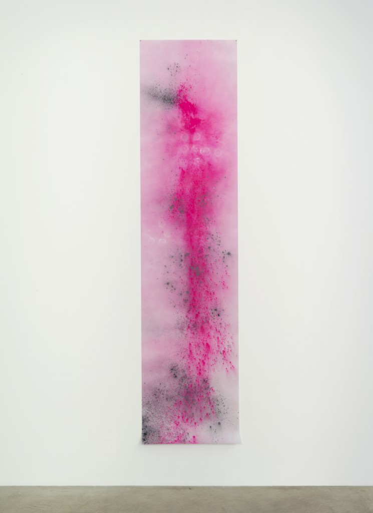 Agras Dusk, 2014 Black Hawk Powder Photo by John Berens Photo courtesy bitforms gallery, New York