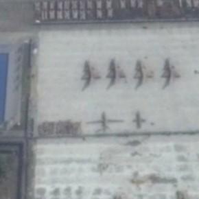 Chengdu12:11:2014